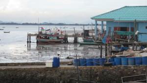 Pattaya-Fish-Market